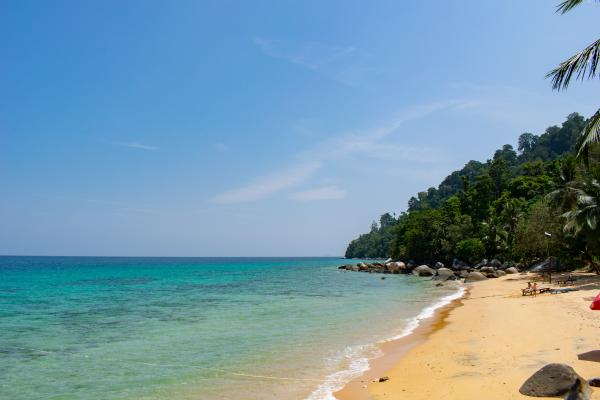 World Travelers - Tioman - image 7