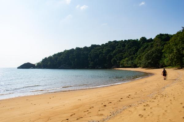 World Travelers - Tioman - image 13