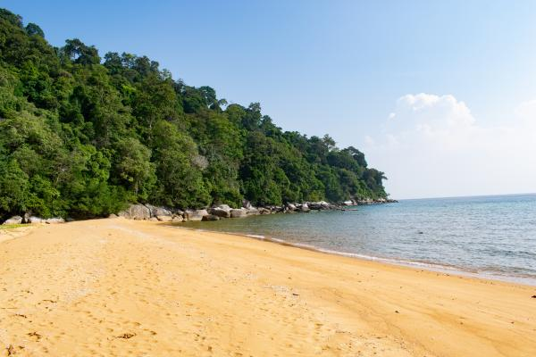 World Travelers - Tioman - image 14
