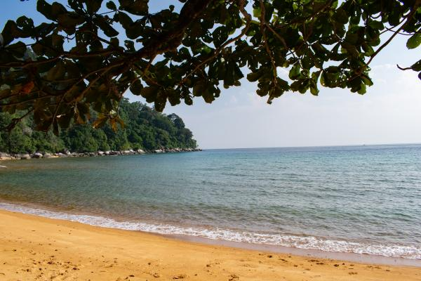 World Travelers - Tioman - image 15