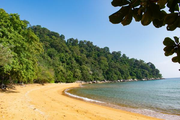 World Travelers - Tioman - image 16