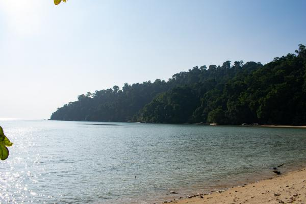 World Travelers - Tioman - image 19