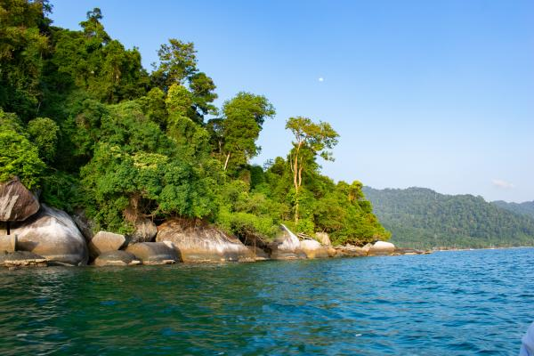 World Travelers - Tioman - image 27