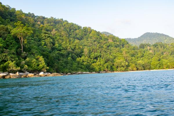 World Travelers - Tioman - image 30