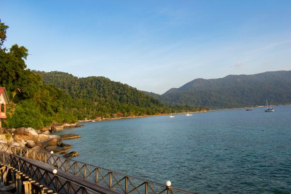 World Travelers - Tioman - image 48