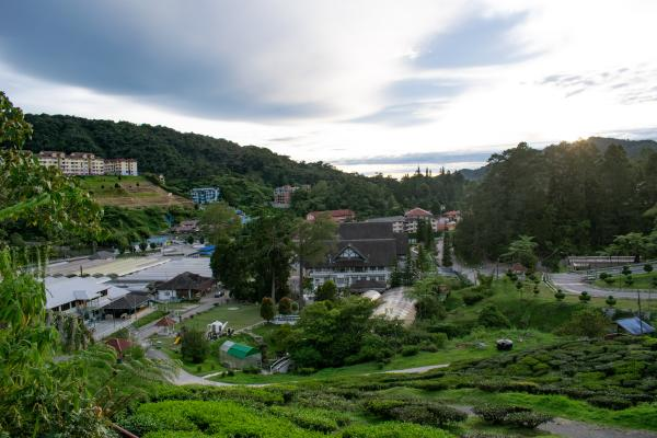 World Travelers - Cameron Highlands - image 38